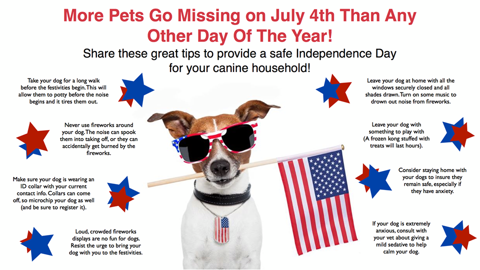 Infographic of pet safety tips for july 4