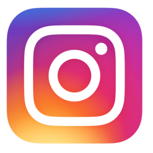 instagram logo the Wilson group real estate