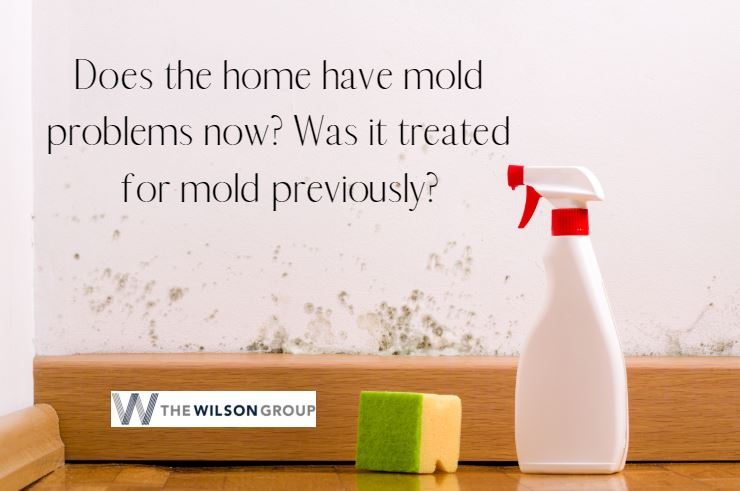 Does Home Have Mold Problems