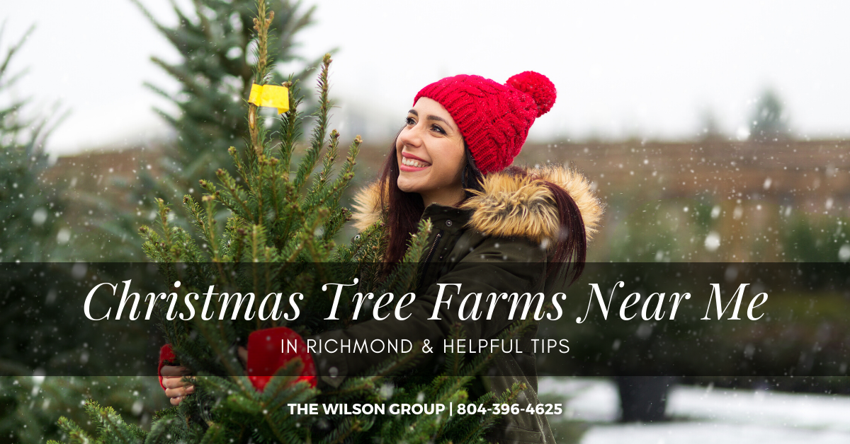 Christmas Tree Farms Near Me in Richmond & Helpful Tips [2020]